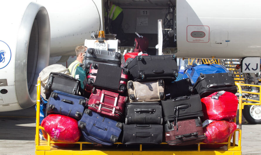 Как грузят багаж в Boeing 737: видео